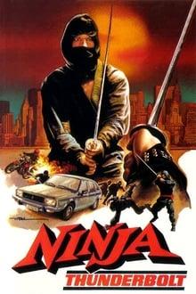 Image Ninja Fury