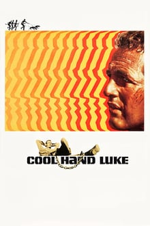 Luke la main froide series tv