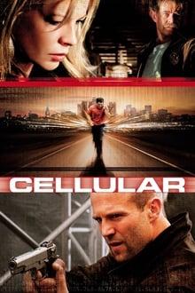 Image Cellular